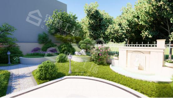 私家小庭院实景花草