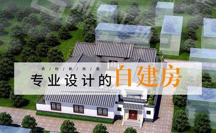 农村别墅设计公司宣传海报图